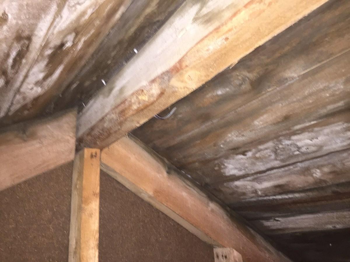 Isolere og innrede kaldloft i hus fra 1950 - ByggeBolig